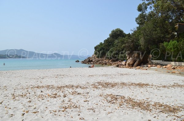 Photo of Ruppione beach - Corsica
