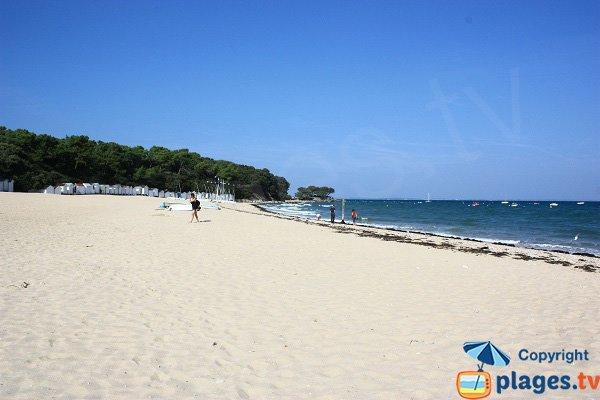 Spiaggia sorvegliata sull'isola di Noirmoutier