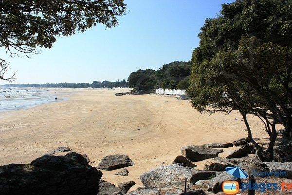Spiaggia dei Sableaux a bassa marea - Noirmoutier