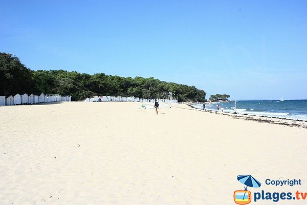 Photo of Sableaux beach in Noirmoutier in France