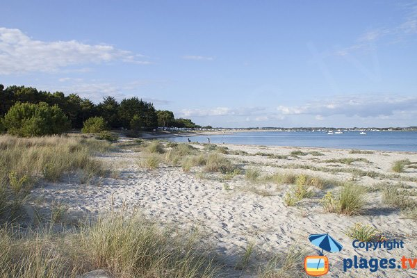 Photo of Sables Blancs beach in Plouharnel - France