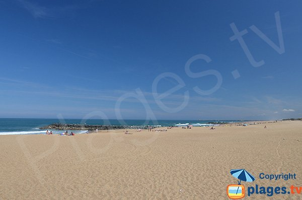 Large beach in Anglet
