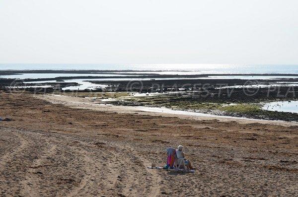 Parte sud della spiaggia Les Sables Vignier - Isola Oleron