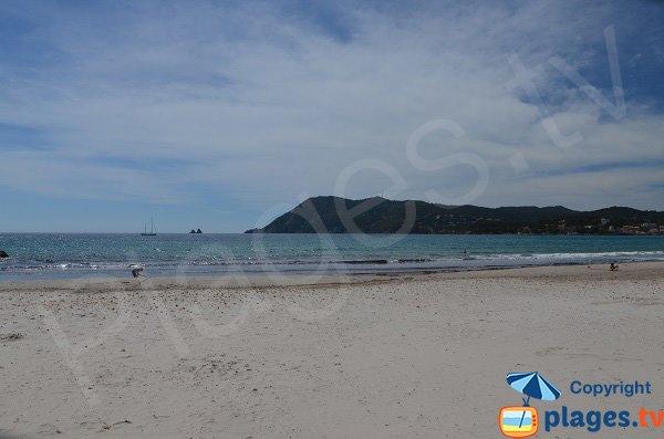 Plage des Sablettes avec vue sur le Cap Sicié - La Seyne