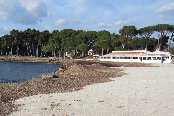 Sand beach in Saint Mandrier in France