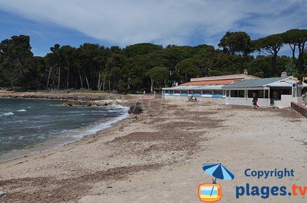 Photo de la plage de Sainte Asile à Saint Mandrier