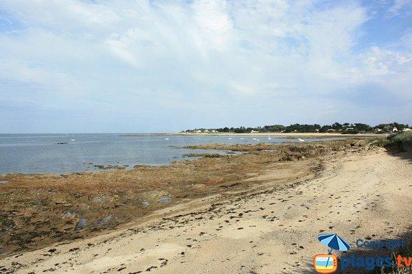 Plage de St Aubin sur l'ile d'Yeu