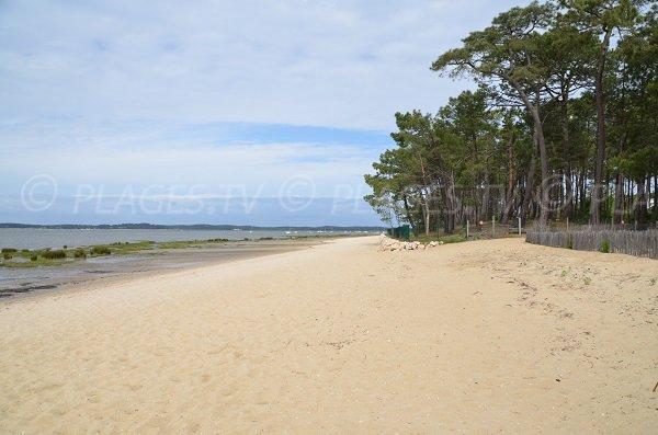Photo de la plage de Saint Brice à Arès