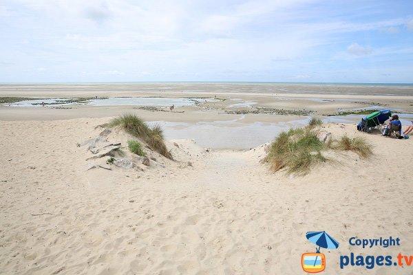 Photo de la plage de Saint Gabriel à Ste Cécile - Camiers