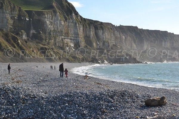 Falaises sur la plage de Saint Jouin