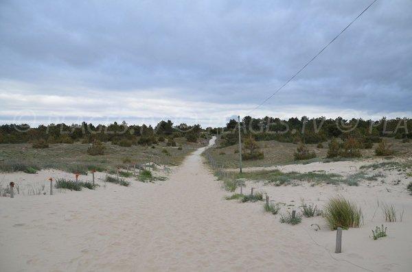 Sentier pour se rendre à la plage St Nicolas au Verdon sur Mer
