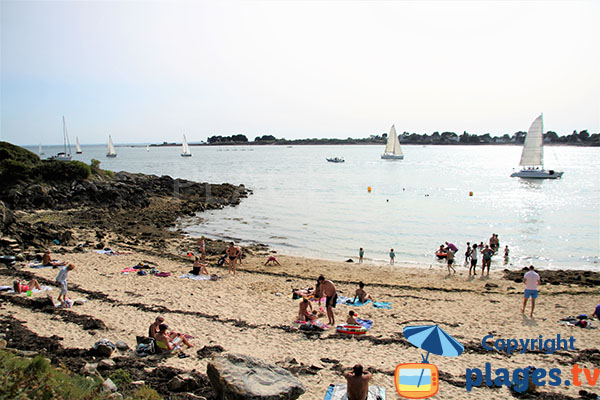 Petite plage de la crique du Chenal  avec départ et arrivée des voiliers