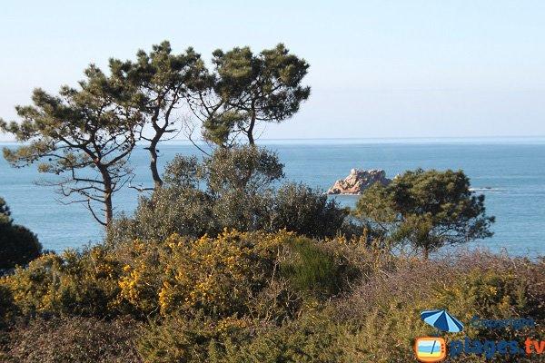 Environnement de la plage de Saint Samson