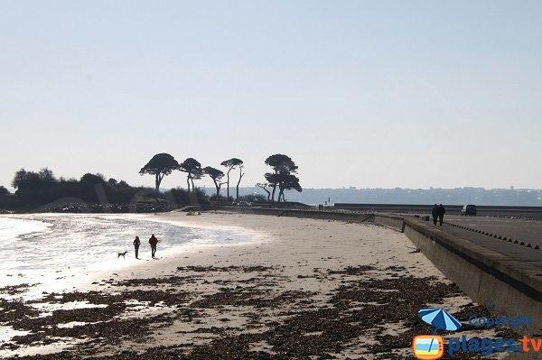 Photo de la plage de Sainte Anne de St Pol de Léon