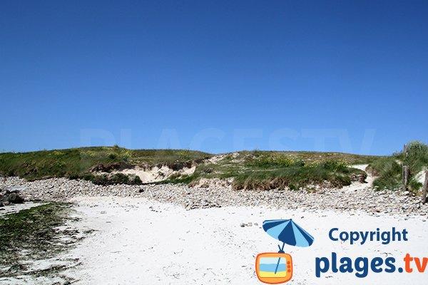 Rebord de la plage de Ste Marguerite - Landéda