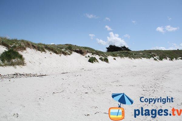 Sable de la plage de Ste Marguerite à Landéda