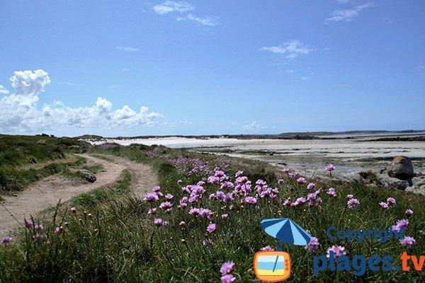 Photo de la plage Nord de Sainte Marguerite - Landéda
