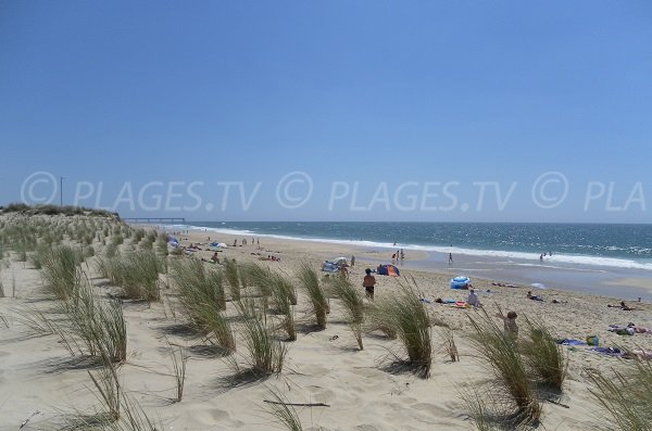 Plage de Salie Nord avec vue sur la plage de Salie Sud - Pyla sur Mer