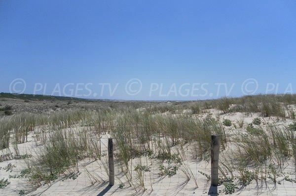 Environnement de la plage de Salie Sud à Pyla