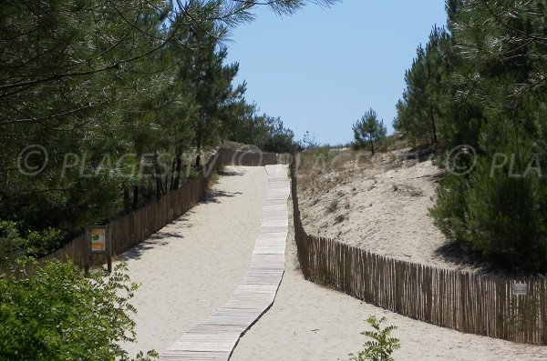Dune de la plage Sud de Salie à Pyla