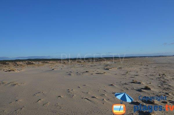 Massif dunaire de la plage Salie