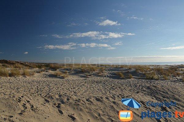 Photo des dunes de la plage de Salie à Pyla sur Mer