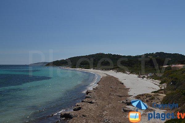 Photo de la plage des Salins à St Tropez