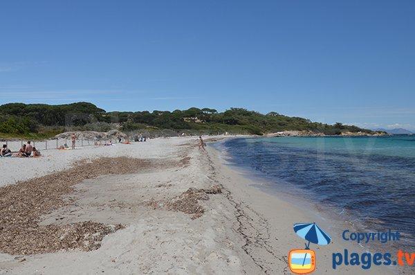 Salins beach in Saint Tropez (France)