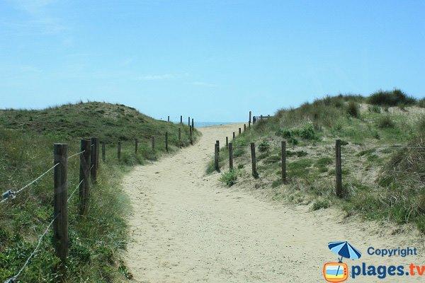 Sentier d'accès à la plage naturiste des Salins en Vendée