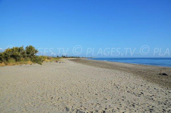 Tour en ruine sur la plage de San Pellegrino