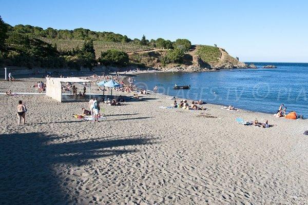 Photo de la plage à côté du centre Helio Marin de Banyuls sur Mer 66