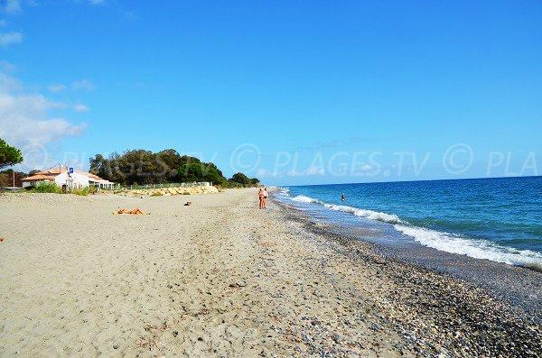 Environnement de la plage de Santa Lucia di Moriani - Haute-Corse