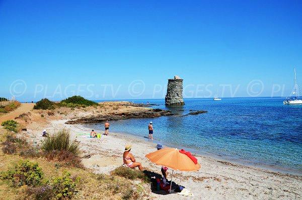Spiaggia à Macinaggio - Capo Corso - Santa Maria