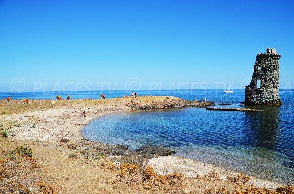 Photo de la plage de la Tour de Santa Maria dans le Cap Corse