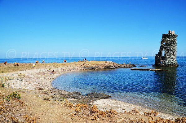 Santa Maria tower and its beach - Macinaggio