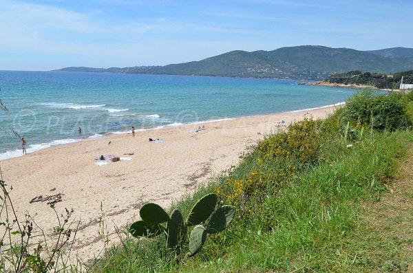 Photo of Santana beach in Corsica