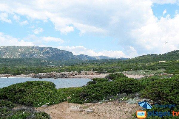 Photo of Saparella beach in Monaccia d'Aullène in Corsica