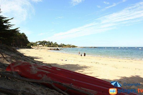 Photo of Sapins beach in Ile d'Yeu