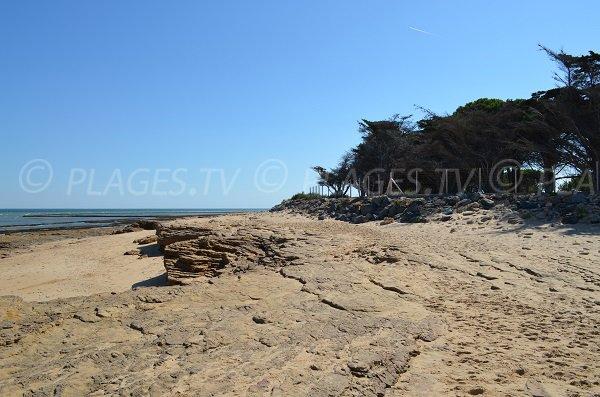 Rochers sur la plage de la Saucière
