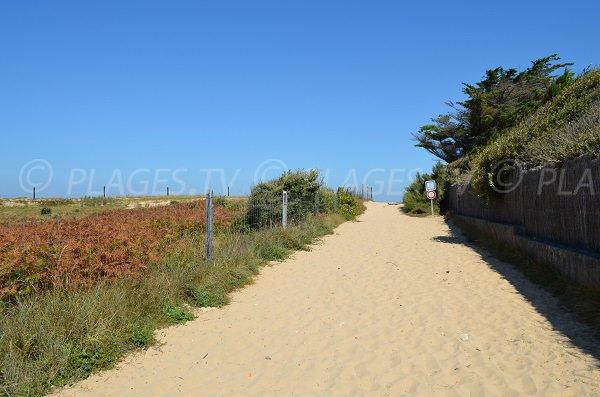 Chemin d'accès à la plage de la Saucière - Portes en Ré