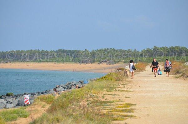 Access to Saumonards beach - Gautrelle area