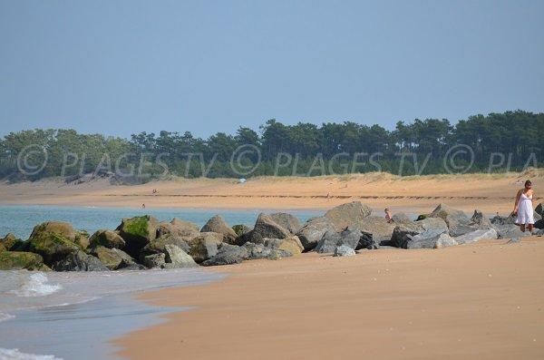 Plage de sable - Les Saumonards - Oléron