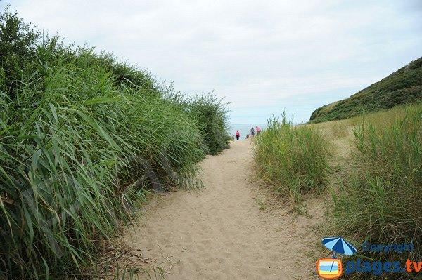 Sentier d'accès à la plage de Saussaye