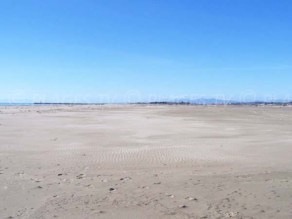 spiaggia selvaggia di Narbonne