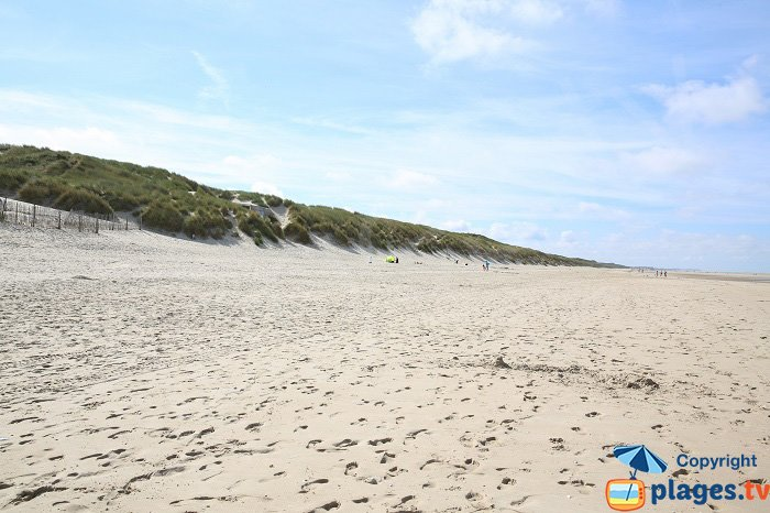 Wild beach in Le Touquet with dunes