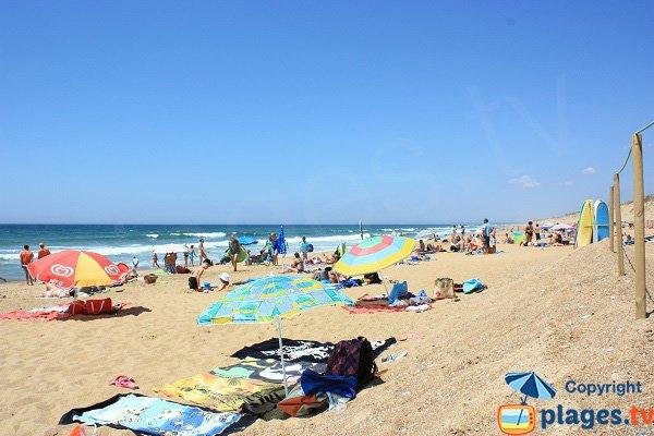 Photo of Sauveterre beach in Olonne sur Mer