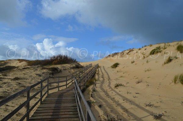 Passerelle de la plage de la Savane à Capbreton