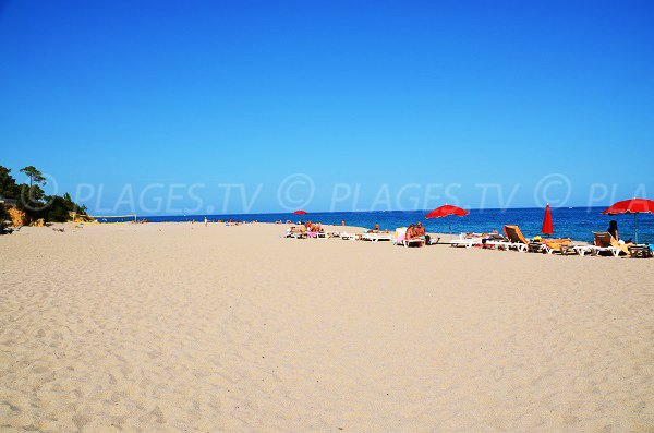 Locations de matelas sur la plage de Scaffa Rossa en Corse