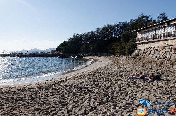 Vue sur l'île Sanguinaire depuis la plage du Scudo dans le golfe d'Ajaccio