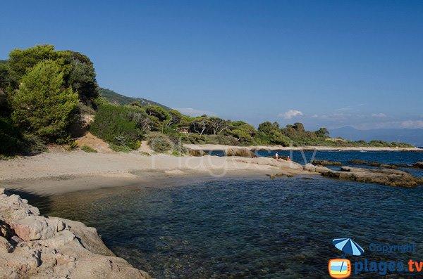 Photo de la plage du Scudo le long de la maison de Tino Rossi